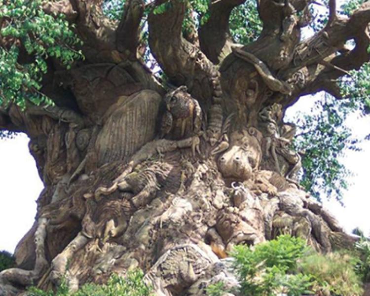 Yontu, Resim ve Sinemada Anıt Ağaçlar (11)